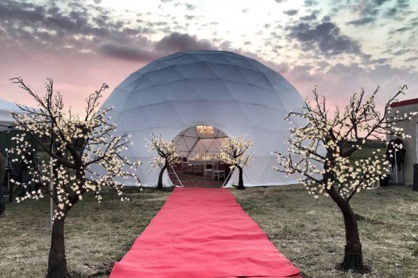 """Dome""""44,Roma"""