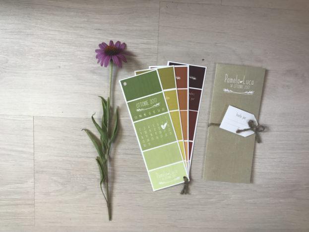 partecipazione palette colori