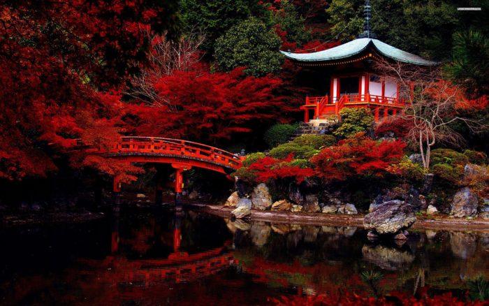 Giappone durante il foliage
