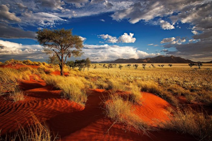 Panorami Namibiani