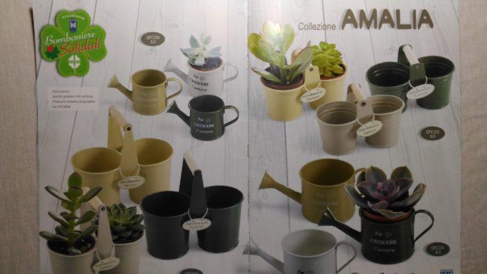Collezione Amalia