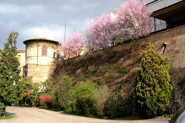 Mura, torre e parcheggio