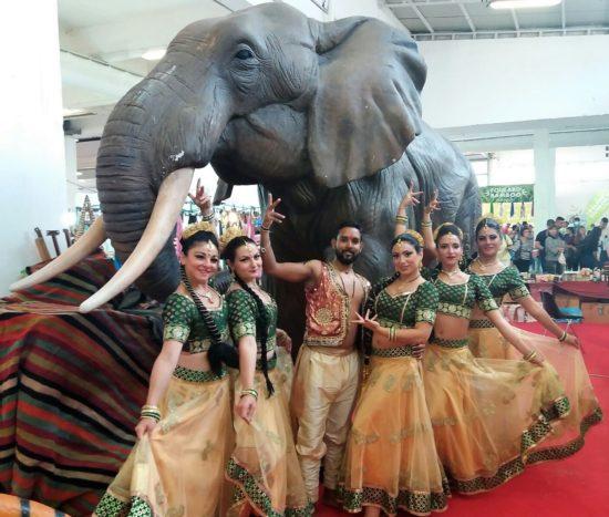 gruppo con elefante