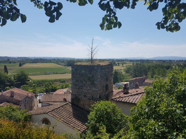 Dalla Rocca di Vicopisano