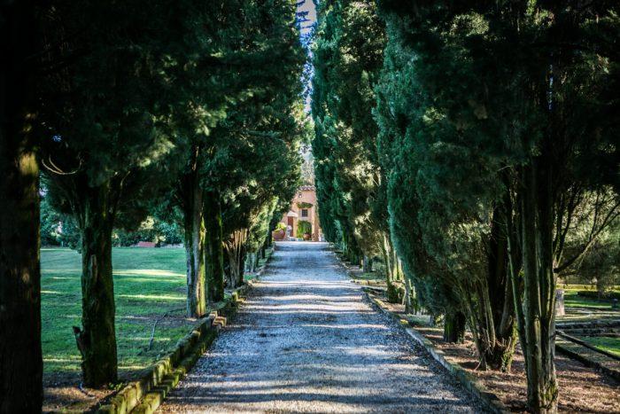 viale di ingresso