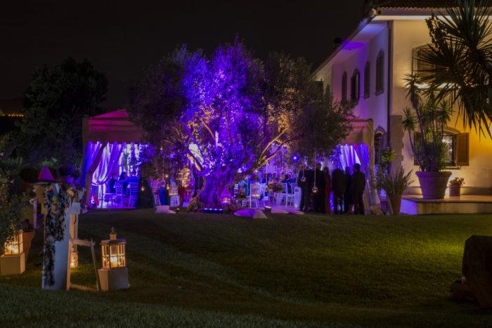 Illuminazione albero