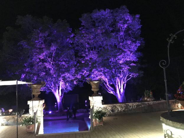 illuminazione alberi
