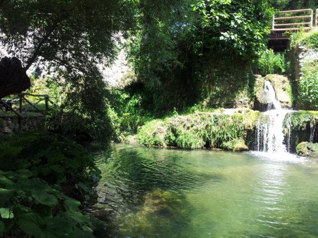 la natura il laghetto