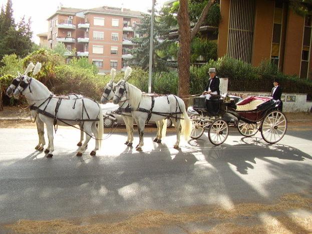 Calesce 4 cavalli