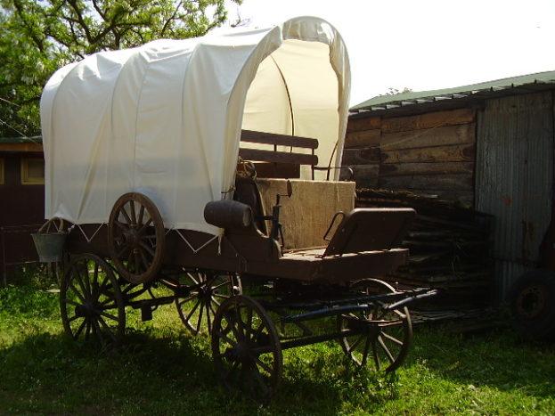 Carro western