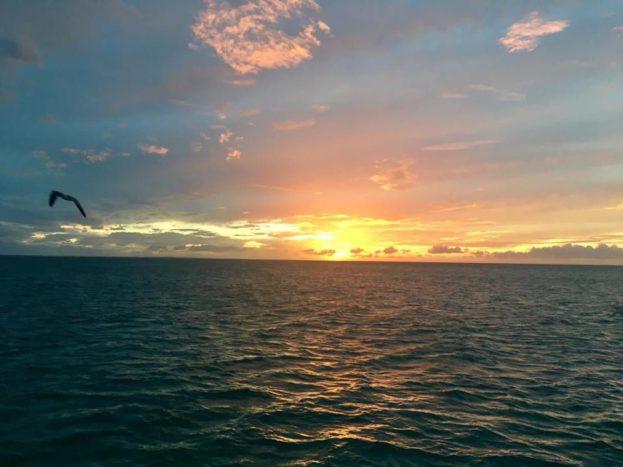 Ankiroa Viaggi Maldive