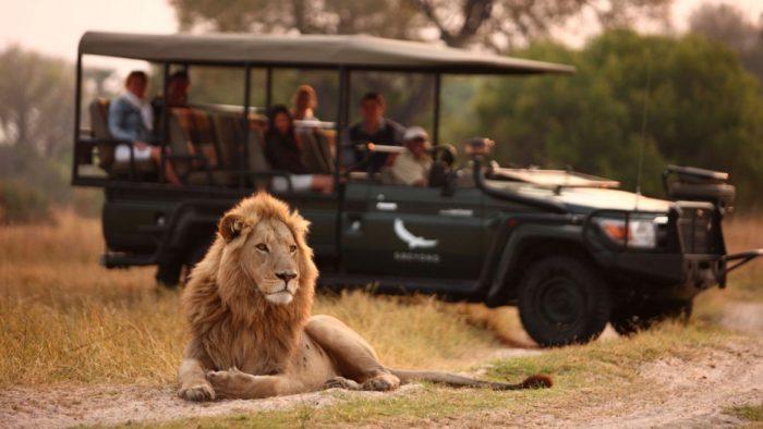 Africa: nella natura selvaggia