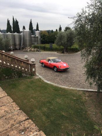 Alfa Romeo Aerodinamica 1983
