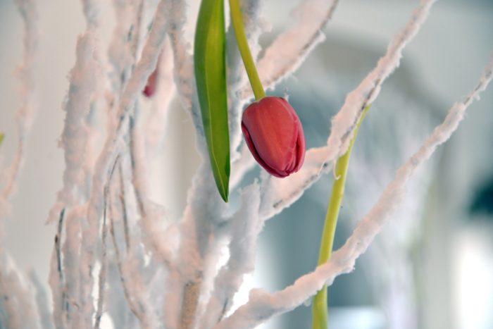 Matrimonio inverno decorazione
