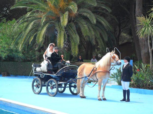 Sposi in carrozza