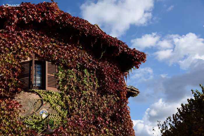 In autunno.....